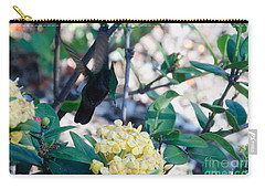 St. Lucian Hummingbird Carry-all Pouch