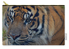 Stare Through Carry-all Pouch