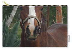 Carry-all Pouch featuring the photograph Stared Down by Peter Piatt