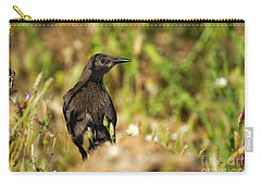 Starling Carry-all Pouch by Guido Montanes Castillo