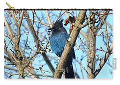Steller's Jay In Winter Carry-all Pouch