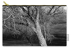 Storm Tree Carry-all Pouch by Steven Reed