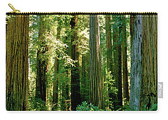 Stout Grove Coastal Redwoods Carry-all Pouch by Ed  Riche