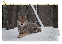 Striking The Pose Carry-all Pouch