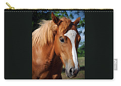 Stud Horse  Carry-all Pouch