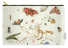 Study Of Insects And Flowers Carry-all Pouch by Ferdinand van Kessel
