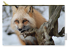 Stunning Sierra Carry-all Pouch by Richard Bryce and Family