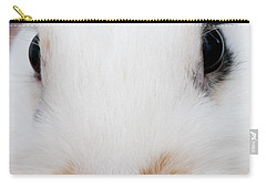 sugar the easter bunny 1 -A curious and cute white rabbit close up Carry-all Pouch by Pedro Cardona