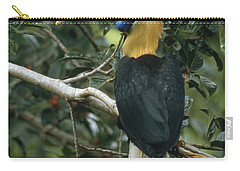 Sulawesi Red-knobbed Hornbill Male Carry-all Pouch by Mark Jones