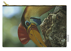 Sulawesi Red-knobbed Hornbill Male Carry-all Pouch by Tui De Roy