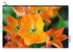 Sun Star Carry-all Pouch by Deena Stoddard