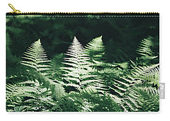 Carry-all Pouch featuring the photograph Sunlight And Shadows-algonquin Ferns by David Porteus