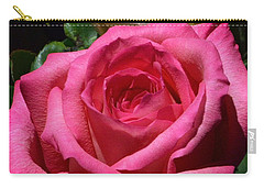 Sunlit Roses Carry-all Pouch