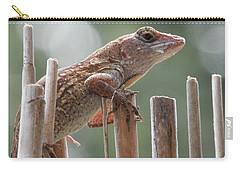 Carry-all Pouch featuring the photograph Sunning Lizard by Belinda Lee