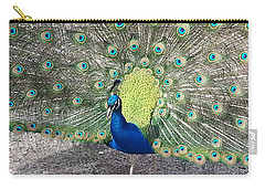 Carry-all Pouch featuring the photograph Sunny Peancock by Caryl J Bohn