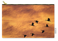 Sunrise Flight 2 Carry-all Pouch by Diane Alexander