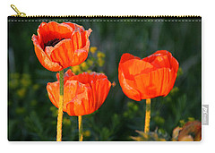 Sunset Poppies Carry-all Pouch by Debbie Oppermann
