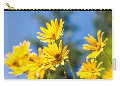 Sunshine Carry-all Pouch by Chad Dutson