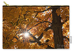 Sunshine Gold Carry-all Pouch by Ana V Ramirez