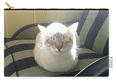 Sunshine Kitty Carry-all Pouch