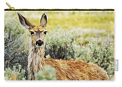 Carry-all Pouch featuring the photograph Surround Sound by Belinda Greb
