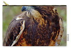 Swainson's Hawk Carry-all Pouch