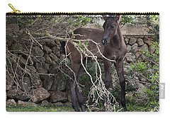 sweet heart - A tender foal wait his beloved mother  Carry-all Pouch