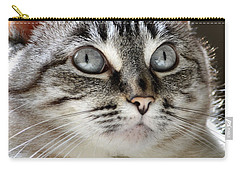 Sweet Innocence Carry-all Pouch by Deb Halloran