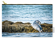 Sweet Seal Carry-all Pouch by Cheryl Baxter