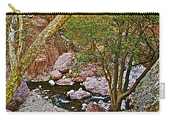 Sycamore And Cottonwood In Whitewater Catwalk National Recreation Trail Near Glenwood-new Mexico  Carry-all Pouch by Ruth Hager