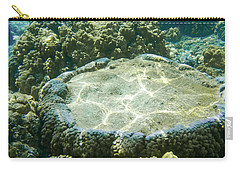 Table Top Coral Carry-all Pouch by Denise Bird