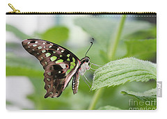 Tailed Jay Butterfly #3 Carry-all Pouch