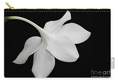 Take A Bow Carry-all Pouch by Judy Whitton