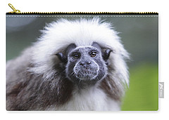 Tamarins Face Carry-all Pouch