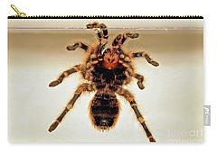 Carry-all Pouch featuring the photograph Tarantula Hanging On Glass by Susan Wiedmann