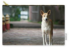 Carry-all Pouch featuring the photograph Temple Dog by Nola Lee Kelsey