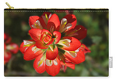 Texas Paintbrush Carry-all Pouch by Lynn Bauer