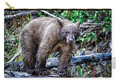 Carry-all Pouch featuring the photograph The Balance Beam by Jim Thompson