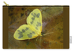 The Beggar Moth Carry-all Pouch