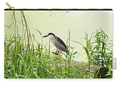 The Black-crowned Night Heron Carry-all Pouch