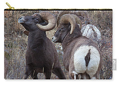 Carry-all Pouch featuring the photograph The Boys Club by Jim Garrison