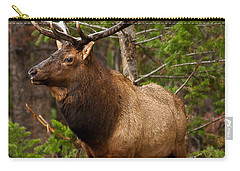 The Bull Elk Carry-all Pouch by Steven Reed