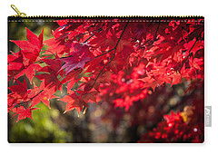 Carry-all Pouch featuring the photograph The Color Of Fall by Patrice Zinck