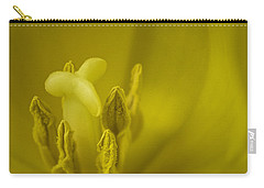 Carry-all Pouch featuring the photograph The Dance by Lucinda Walter