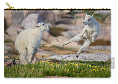 Carry-all Pouch featuring the photograph The Dance Of Joy by Jim Garrison