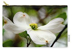 The Dogwood Carry-all Pouch