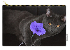 The Eyes Have It Carry-all Pouch by Rachel Hames