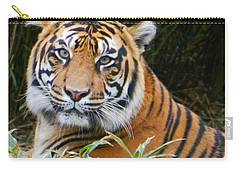 The Eyes Of A Sumatran Tiger Carry-all Pouch