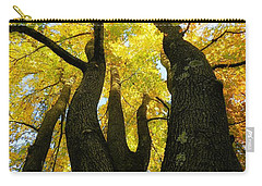 The Family Tree Carry-all Pouch