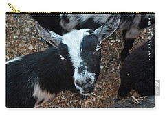 Carry-all Pouch featuring the photograph The Goat With The Gorgeous Eyes by Verana Stark